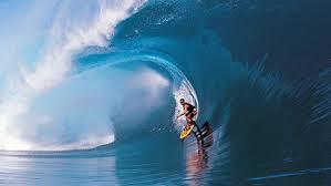 Algarve Surf.